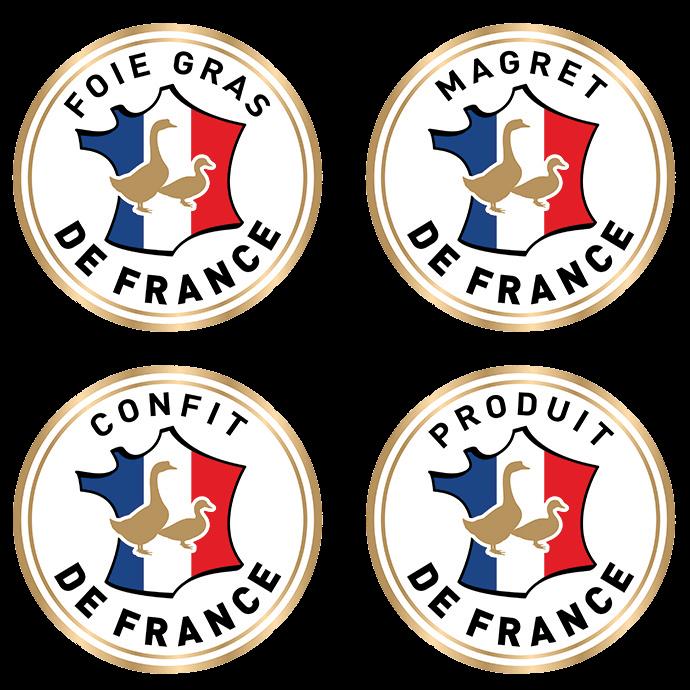 Logos CIFOG
